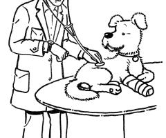 Coloriage vétérinaire