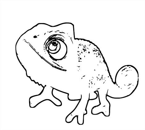 Coloriage Caméléon raiponce