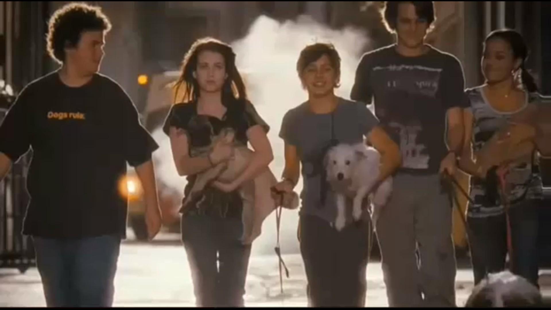 Palace pour chiens trailer