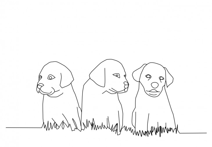 Coloriage chiots dans l'herbe