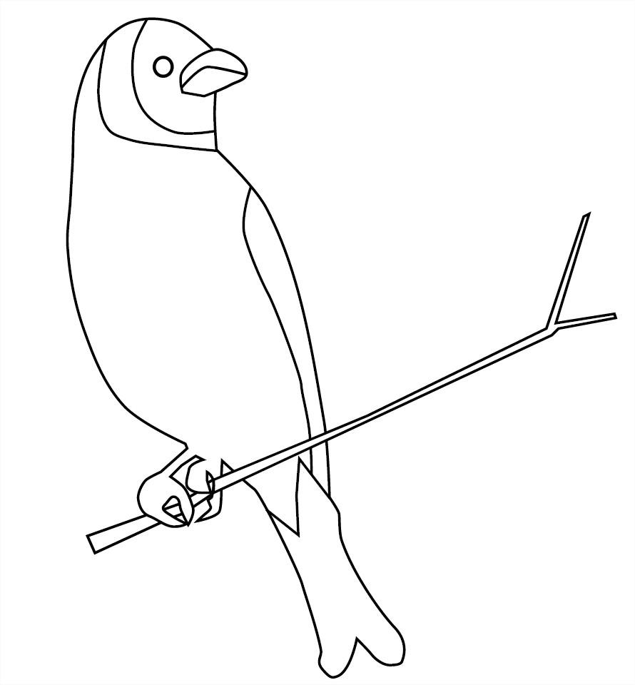 Coloriage oiseau sur une branche d'arbre