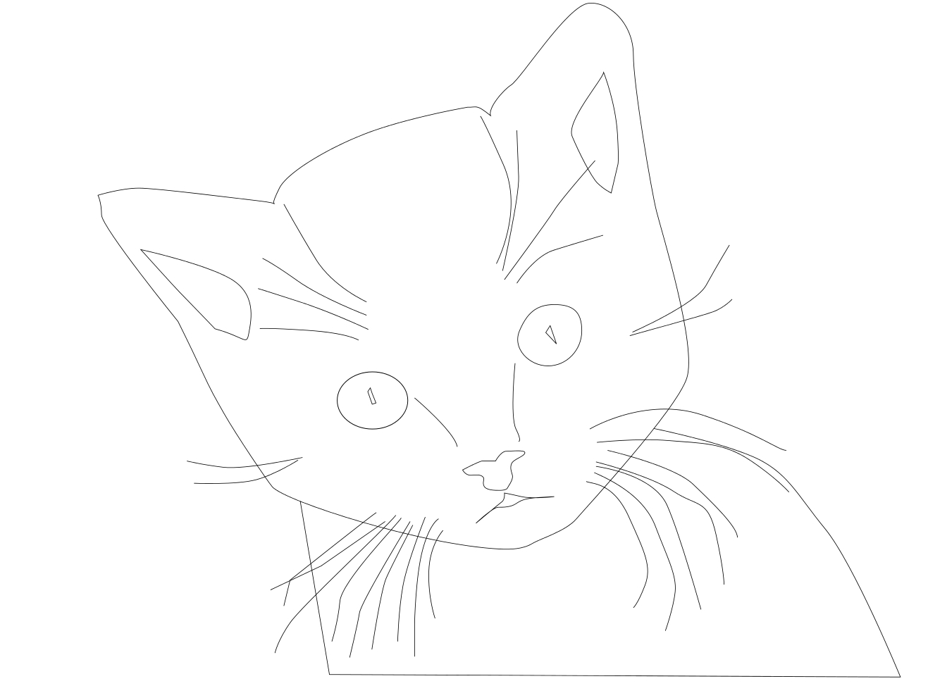 Coloriage visage chat