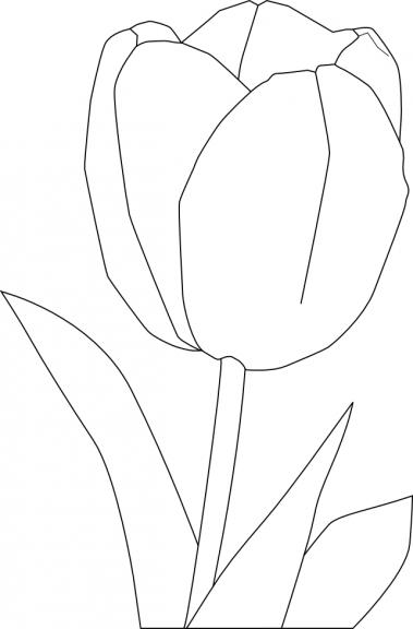 La tulipe coloriage tulipe imprimer et colorier - Coloriage fleur tulipe ...