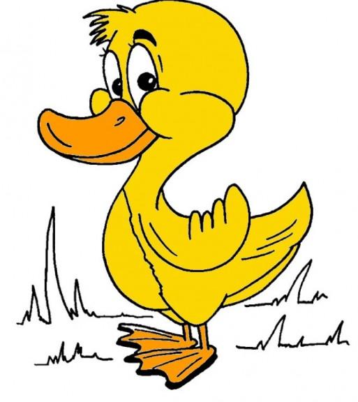 Coloriage canard avec un chapeau imprimer et colorier - Image canard a imprimer ...