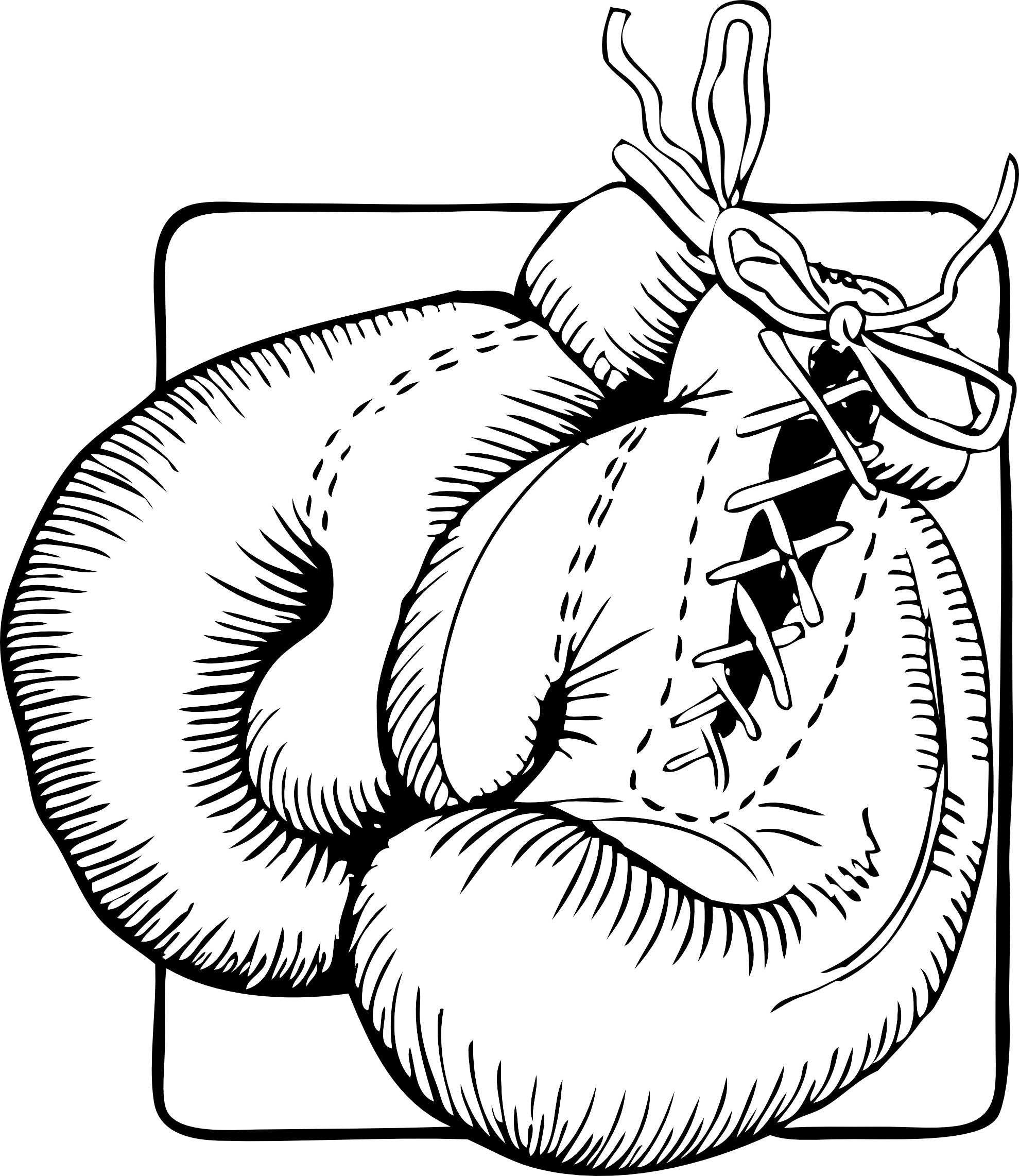 Coloriage gants de boxe