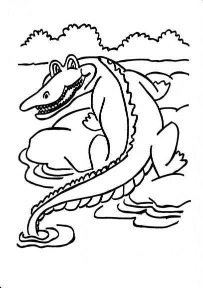 Crocodile coloriage