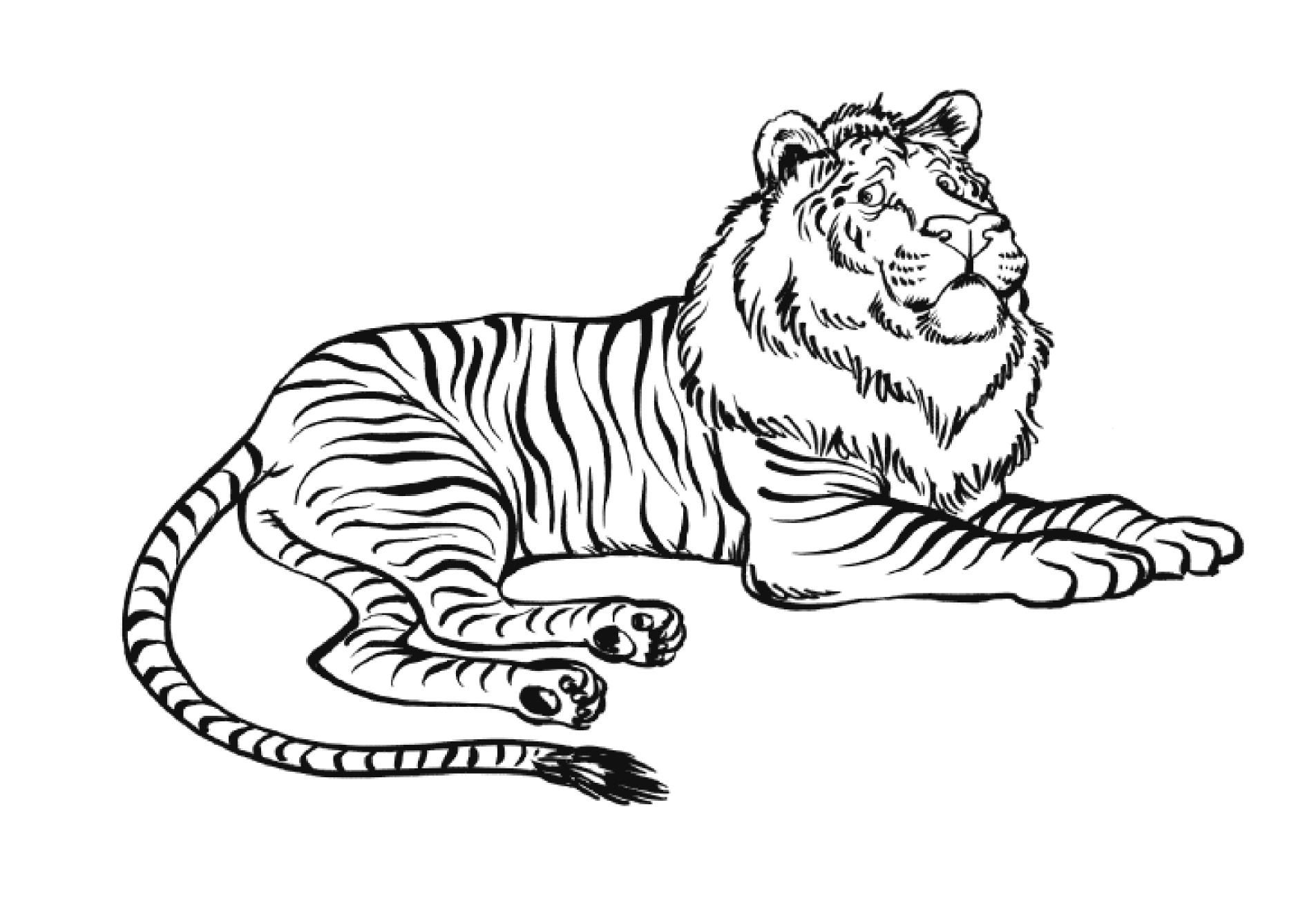 Coloriage Ligre Lion Tigre A Imprimer Et Colorier