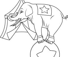 Éléphant cirque coloriage