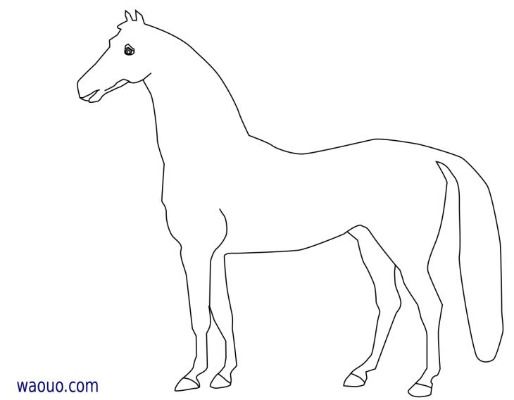 Coloriage cheval gratuit