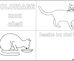 Colorie et dessine le chat