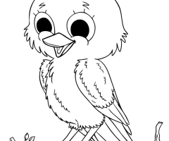 Coloriage bebe oiseau