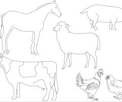 Coloriage animaux de la ferme
