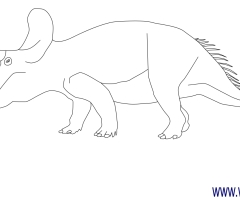 Coloriage Triceratops
