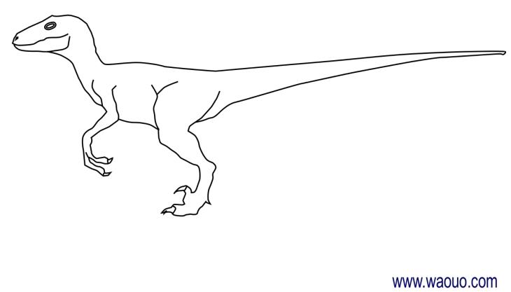 Coloriage dinosaure velociraptor imprimer et colorier - Dessin de dinosaure a imprimer ...