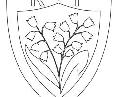 Coloriage Rugby Club toulonnais