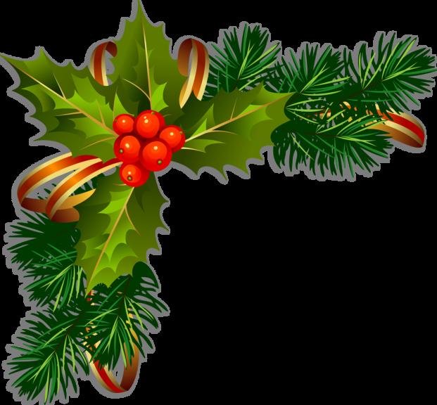Houx Noel