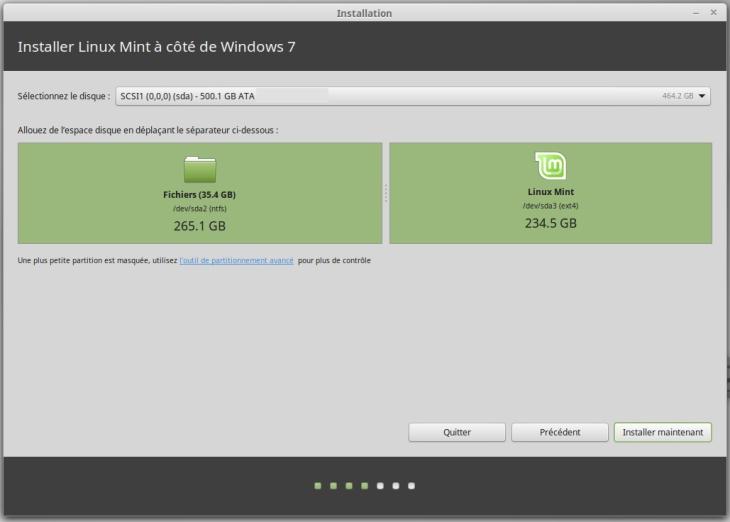 Linux Mint partitions
