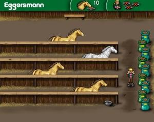 Nourrir chevaux