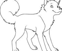 Coloriage chien Husky